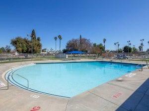 neighborhood community pool afternoon