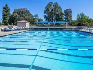 Palm Park Aquatics Center